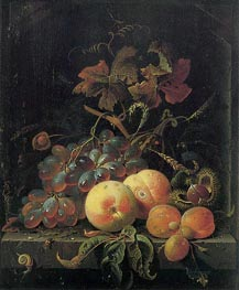 Fruit Still Life with Peaches, Grapes and Apricots, undated von Abraham Mignon | Gemälde-Reproduktion