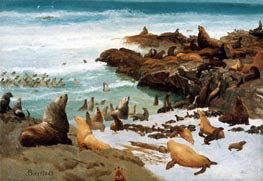 Seal Rocks, Farallons, 1872 by Bierstadt | Painting Reproduction