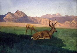 Deer | Bierstadt | Painting Reproduction