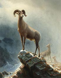 Rocky Mountain, Big Horn Sheep, c.1882/38 by Bierstadt | Painting Reproduction