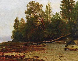 The Fallen Tree, undated by Bierstadt | Painting Reproduction