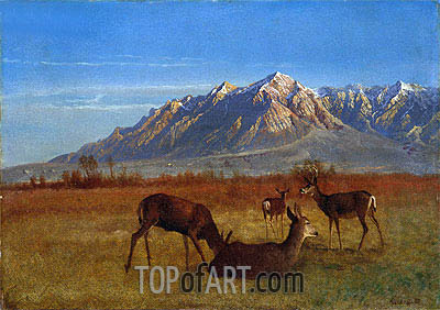 Deer in Mountain Home, c.1879 | Bierstadt | Gemälde Reproduktion