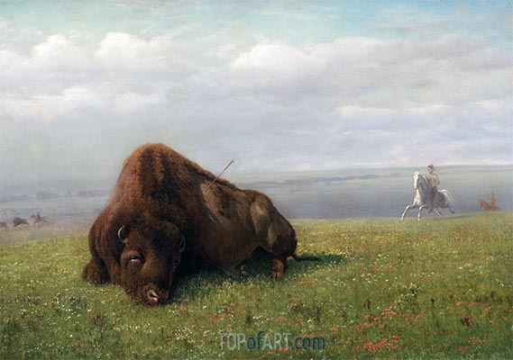 Buffalo Hunting, undated | Bierstadt | Painting Reproduction