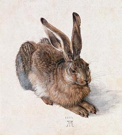 Hare, 1502 by Durer | Painting Reproduction
