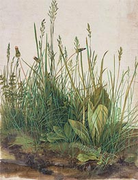 The Great Piece of Turf | Durer | Painting Reproduction