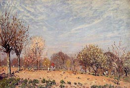 Apple Trees in Flower, Spring Morning, 1873 von Alfred Sisley | Gemälde-Reproduktion