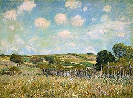 Meadow | Alfred Sisley | Painting Reproduction