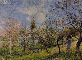 Orchard in Spring - By | Alfred Sisley | Painting Reproduction