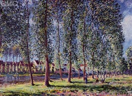 A Lane of Poplars at Moret, 1888 by Alfred Sisley | Painting Reproduction