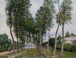 The Avenue of Poplars along the Banks of the Loing, 1892 by Alfred Sisley | Painting Reproduction