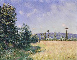 Sahurs Meadows in Morning Sun, 1894 von Alfred Sisley | Gemälde-Reproduktion