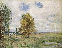 The Plain at Veneux-Nadon, 1881 von Alfred Sisley | Gemälde-Reproduktion