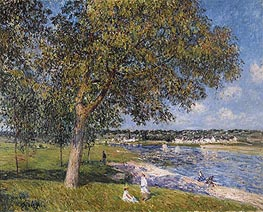 Walnut in a Meadow Thomery, 1880 by Alfred Sisley | Painting Reproduction