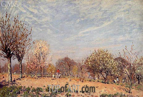 Apple Trees in Flower, Spring Morning, 1873   Alfred Sisley   Painting Reproduction