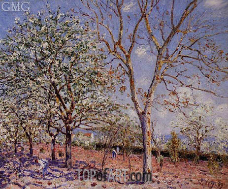 Plum and Walnut Trees in Spring, 1889 | Alfred Sisley | Gemälde Reproduktion