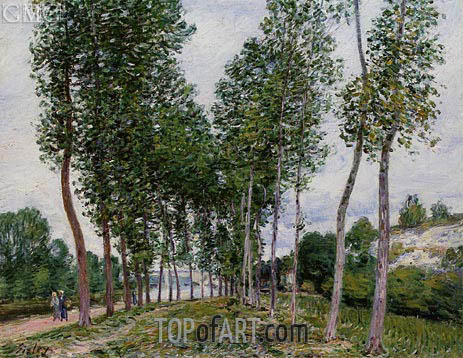 The Avenue of Poplars along the Banks of the Loing, 1892 | Alfred Sisley | Gemälde Reproduktion