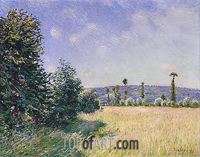 Sahurs Meadows in Morning Sun, 1894 | Alfred Sisley | Gemälde Reproduktion