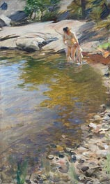 Morning Toilet (With His Mother), a.1888 by Anders Zorn | Painting Reproduction