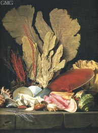 Still Life with Tuft of Marine Plants, Shells and Corals | Vallayer-Coster | Painting Reproduction