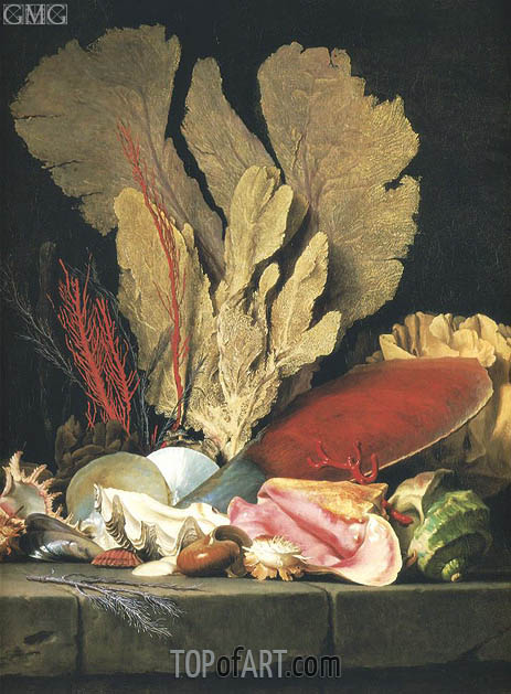 Still Life with Tuft of Marine Plants, Shells and Corals, 1769 | Vallayer-Coster | Painting Reproduction
