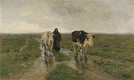 Changing Pasture, c.1880 by Anton Mauve   Painting Reproduction