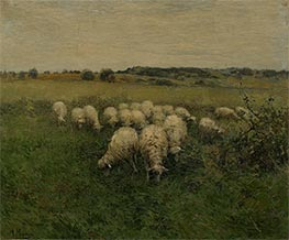 Sheep Grazing in an Open Field, Undated by Anton Mauve   Painting Reproduction