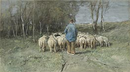 A Shepherd and his Flock, Undated by Anton Mauve | Painting Reproduction