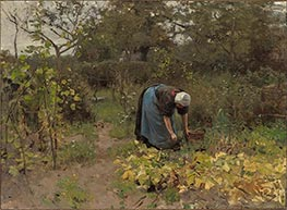 In the Vegetable Garden, 1887 by Anton Mauve | Painting Reproduction