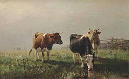 Cows in a Meadow, Undated by Anton Mauve | Painting Reproduction