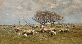 A Shepherd with Sheep in a Field, Undated by Anton Mauve | Painting Reproduction
