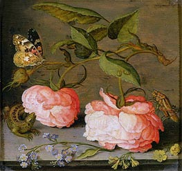 A Still Life with Roses on a Ledge | van der Ast | Painting Reproduction