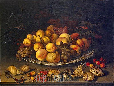 Plate with Fruits and Shells, 1630   van der Ast   Painting Reproduction