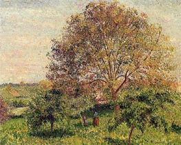 Walnut Tree in Spring, 1894 by Pissarro | Painting Reproduction