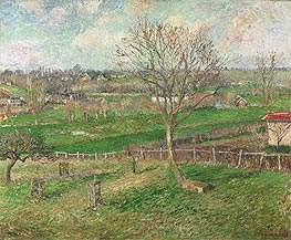 The Field and the Great Walnut Tree in Winter, Eragny, 1885 von Pissarro | Gemälde-Reproduktion
