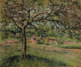 Apple Tree at Eragny, 1884 von Pissarro | Gemälde-Reproduktion