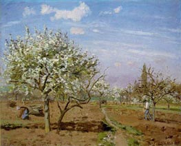 Orchard in Bloom, Louveciennes, 1872 von Pissarro | Gemälde-Reproduktion