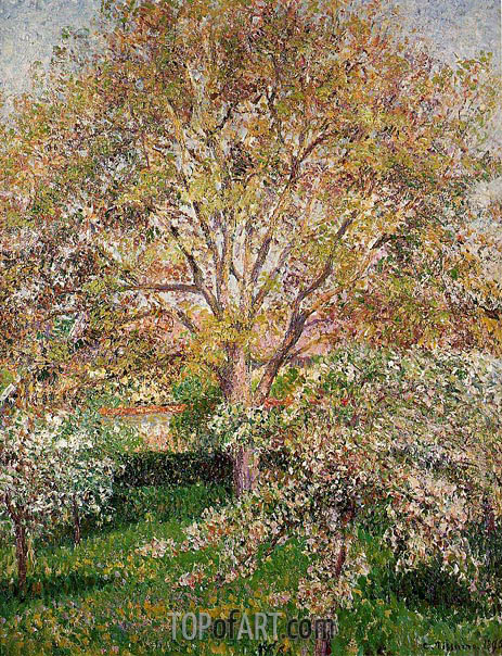 The Walnut and Apple Trees in Bloom at Eragny, 1895 | Pissarro | Gemälde Reproduktion