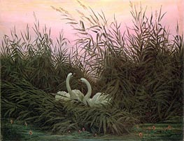 Swans in the Reeds | Caspar David Friedrich | Painting Reproduction