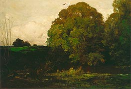 A Pond in the Morvan, 1869 by Charles-Francois Daubigny | Painting Reproduction