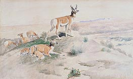 Antelope | Charles Marion Russell | Painting Reproduction