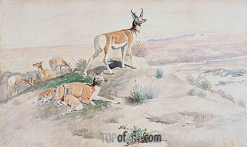 Antelope, 1894 | Charles Marion Russell | Painting Reproduction