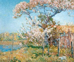 Apple Trees in Bloom, Old Lyme, 1904 by Hassam | Painting Reproduction