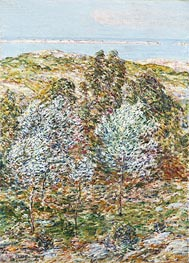 Springtime Vision, 1900 by Hassam | Painting Reproduction