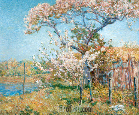 Apple Trees in Bloom, Old Lyme, 1904 | Hassam | Gemälde Reproduktion
