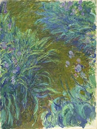 Irises, c.1914/17 by Monet   Painting Reproduction
