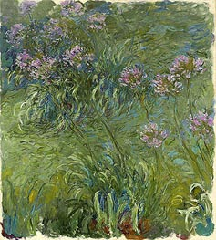 Agapanthus, c.1914/26 by Monet | Painting Reproduction