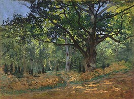 The Bodmer Oak, Fontainebleau Forest | Monet | Painting Reproduction