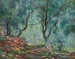 Olive Grove in the Moreno Garden | Monet | Painting Reproduction
