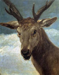 Head of a Buck, c.1634 by Velazquez | Painting Reproduction