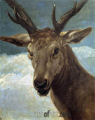 Head of a Buck, c.1634 | Velazquez | Painting Reproduction